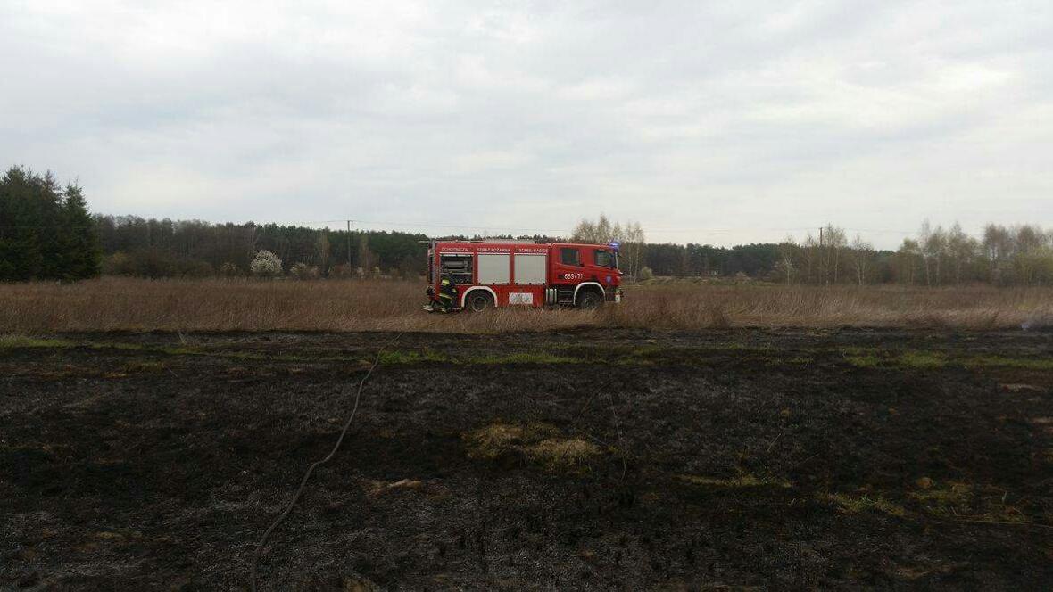Pożar trawy Janów ul. Pohulanka