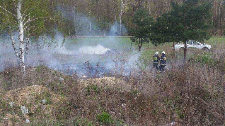 Pożar trawy ul. Izabelińska Stare Babice