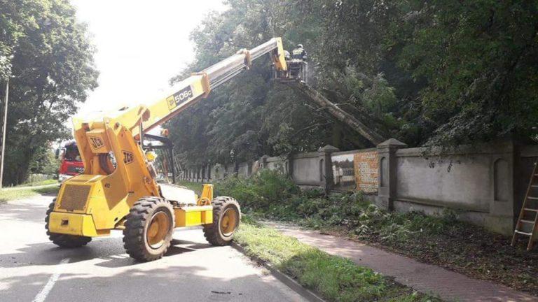 47. 18.07.2018 – Pochylone drzewo – Zielonki Parcele ul. Warszawska