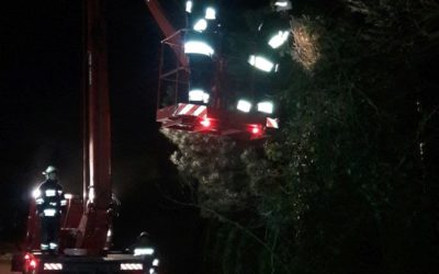 Wyjazd nr 2 – 03.01.2019 – Przechylone drzewo nad budynkiem mieszkalnym – Klaudyn ul. Lutosławskiego gm Stare Babice