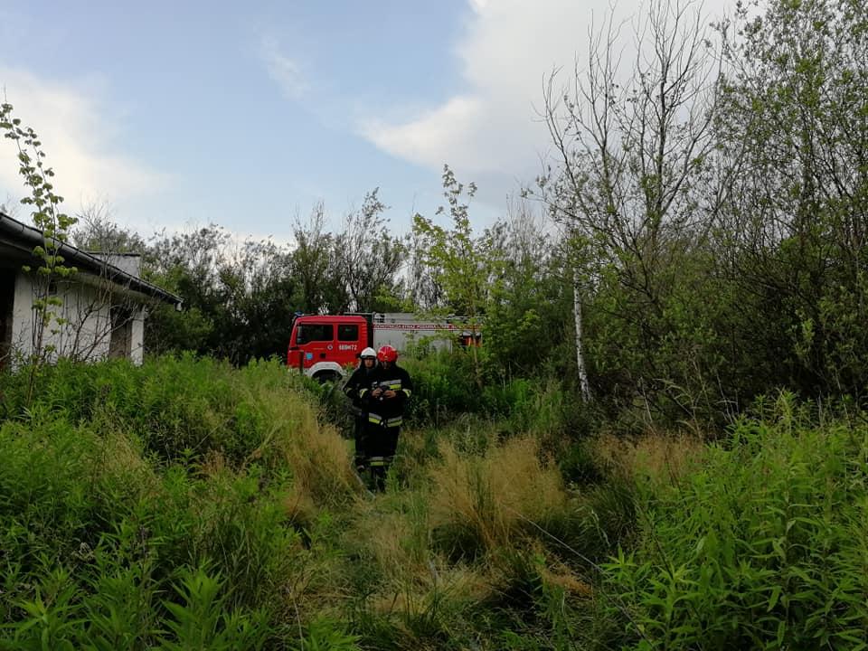 19 czerwca 2019 roku – Pożar pustostanu i wypadek na trasie S8