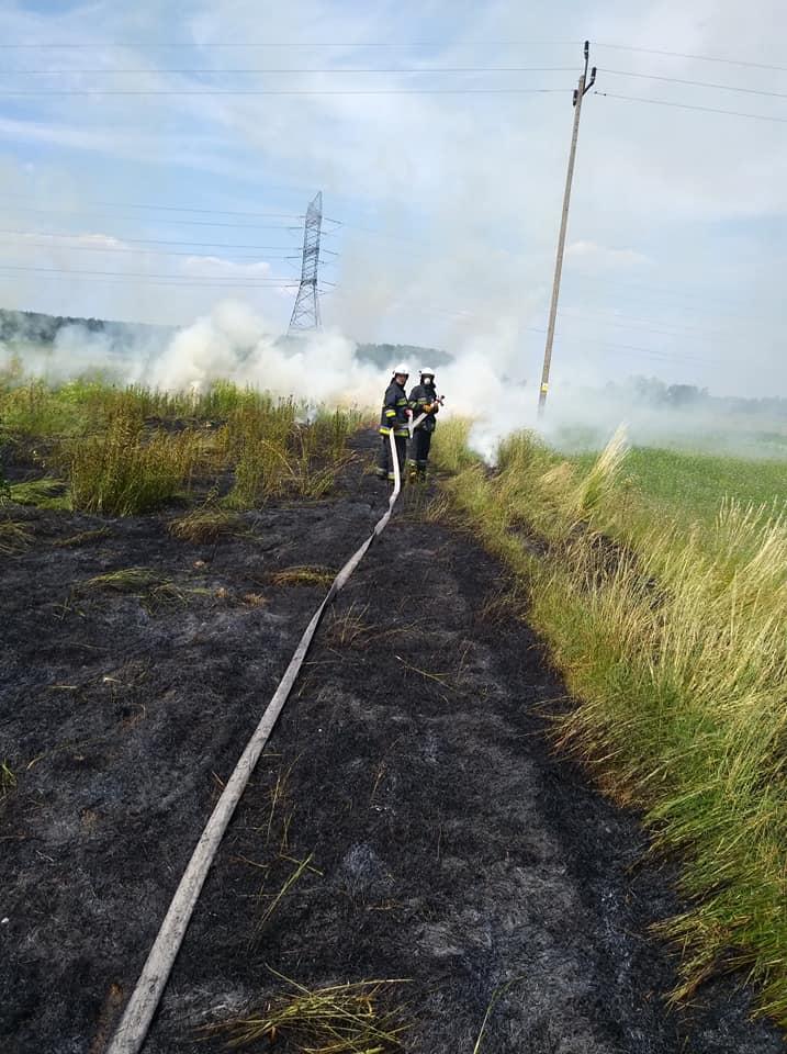 26 czerwca 2019 – Pożar traw w Koczargach Nowych – ulica Warszawska